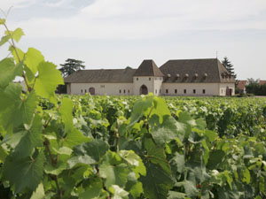 Chateau de Marsannay Marsannay